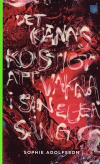 9789186969646_200x_det-kanns-konstigt-att-vakna-i-sin-egen-sang_pocket