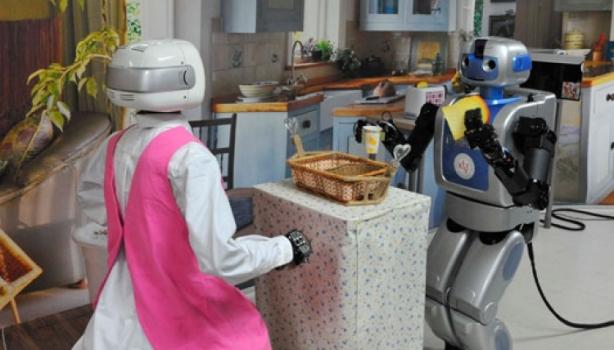 korea-robotshalvbred.jpg